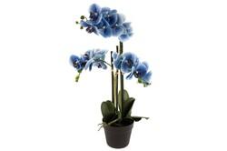 Mikasa Moor - Mavi 3lü Yapay Orkide 70cm